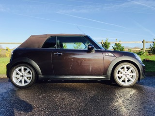 Lucky Mini Shes Going To Live In Spain With A Fabulous Family