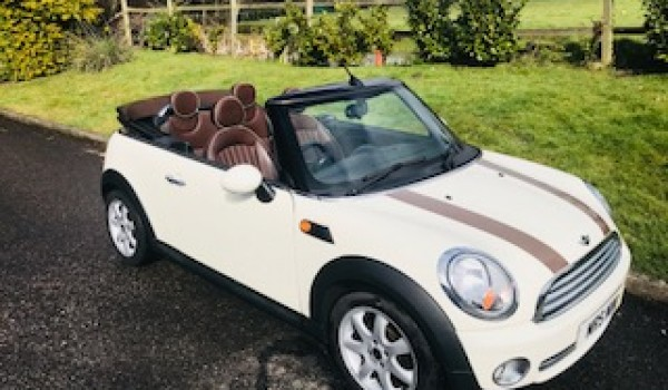 2009 Mini Cooper Convertible With Chocolate Hood Matching Lounge